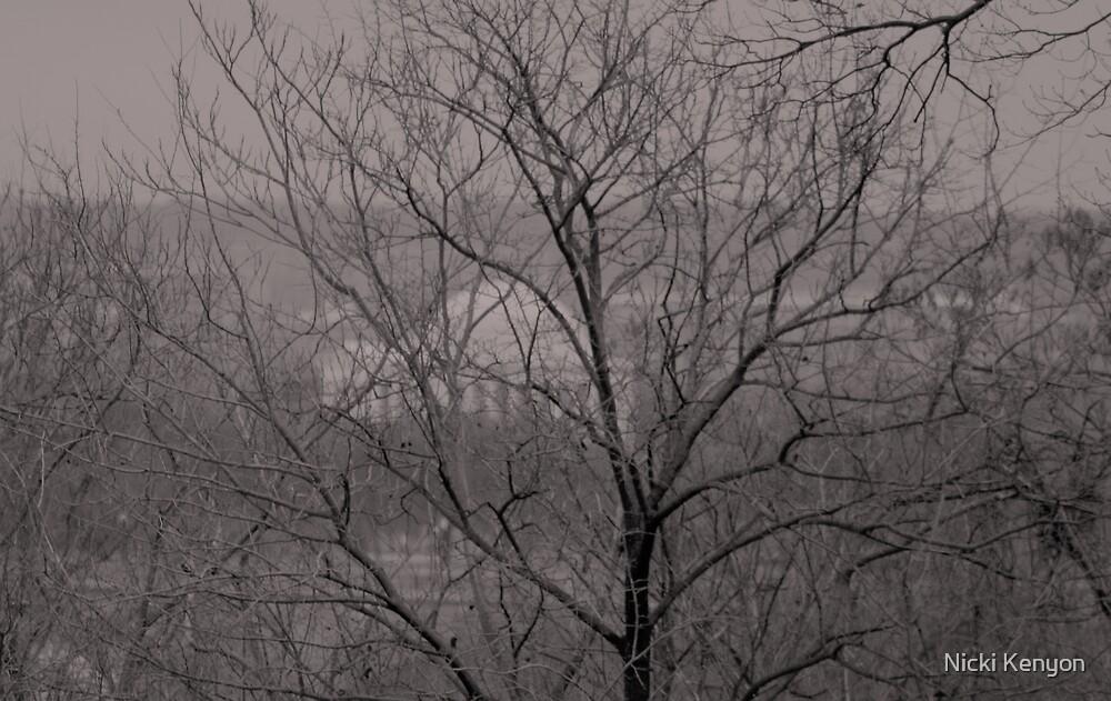 DC through the trees by Nicki Kenyon