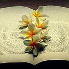 Frangipanis On A Book by Evita