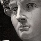 Michelangelo David Oil Painting by Neil Godding