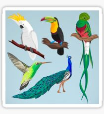 Exotic Bird Design  Sticker