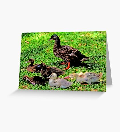 The Duck's Family Portrait Greeting Card