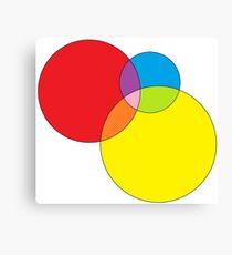 colors 001 Canvas Print