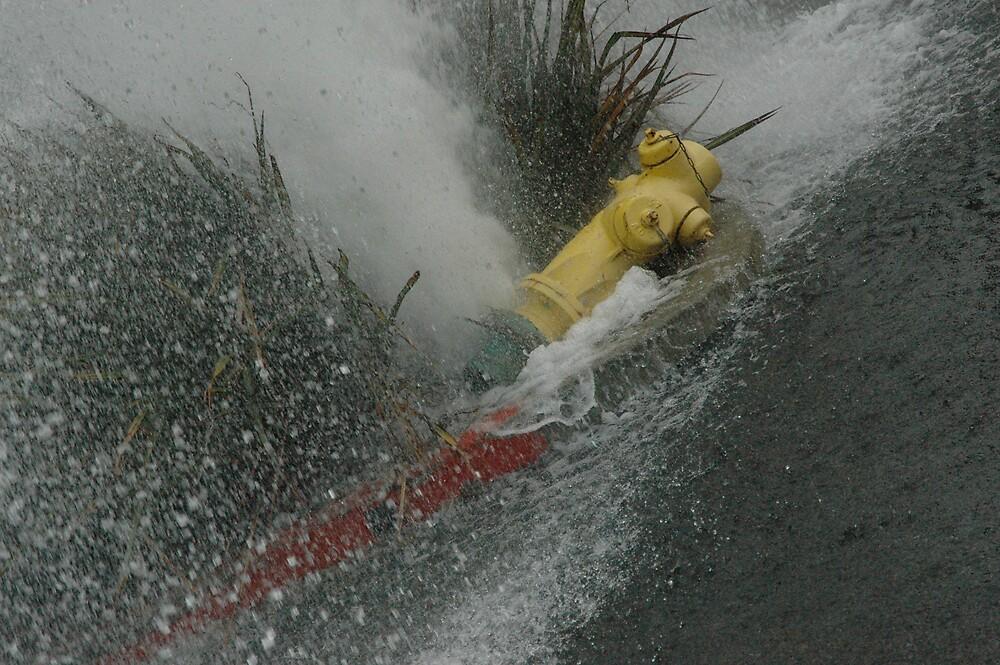 Broken Hydrant by Paul Franson