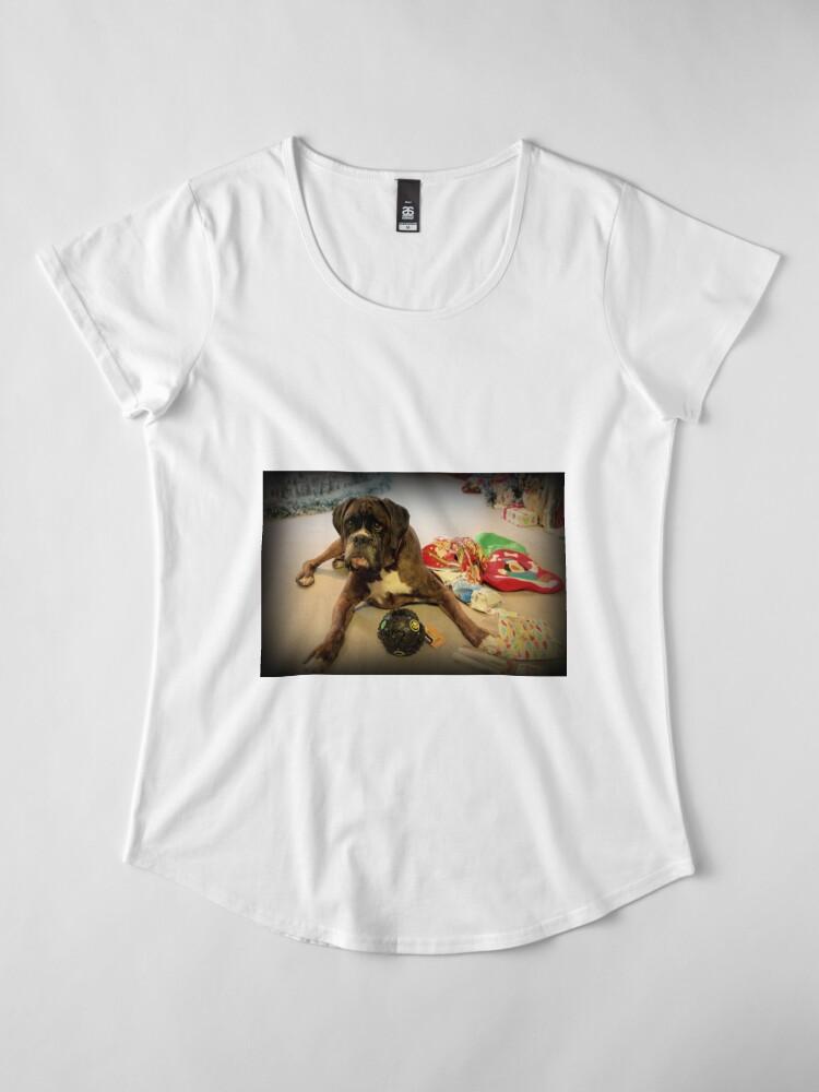 Alternative Ansicht von Ist das ein anderes Weihnachtsgeschenk für mich? - Boxer-Hunde-Reihe Premium Rundhals-Shirt