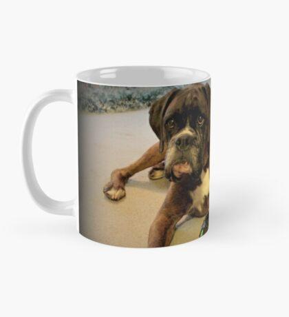 Ist das ein anderes Weihnachtsgeschenk für mich? - Boxer-Hunde-Reihe Tasse