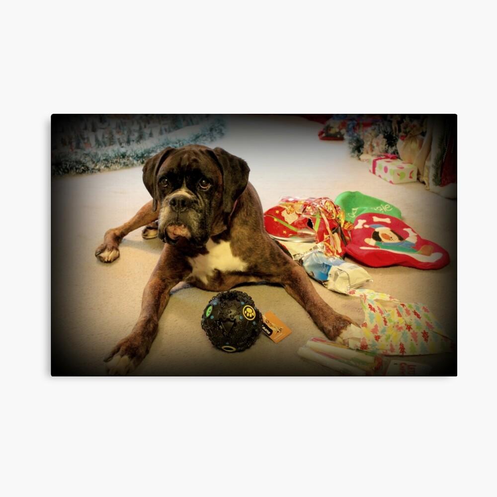 Ist das ein anderes Weihnachtsgeschenk für mich? - Boxer-Hunde-Reihe Leinwanddruck