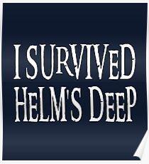 I Survived... Poster