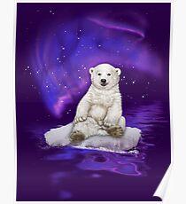 Northern Lights Polar Bear Poster