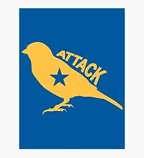 Attack Bird Photographic Print