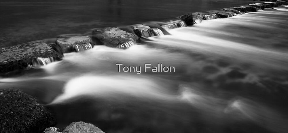 Ingmar the Ghost by Tony Fallon