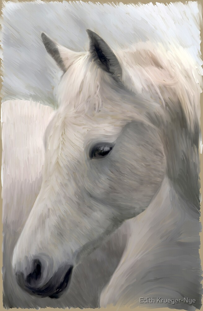 The White Horse by Edith Krueger-Nye