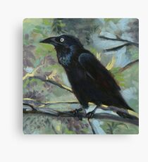 The Clever Crow Canvas Print