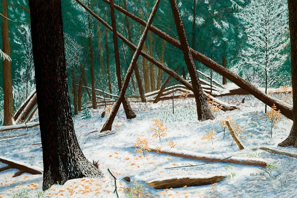 Windswept Woods by GeorgeBurr