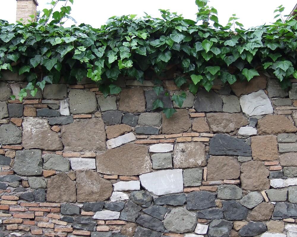 Roman wall by megankerr