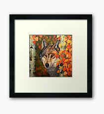 Colours of the Wolf Framed Print