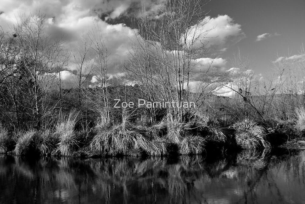Serenity by Zoe Pamintuan