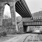 Under the Overpass Little Falls, NY USA by Frank Kapusta