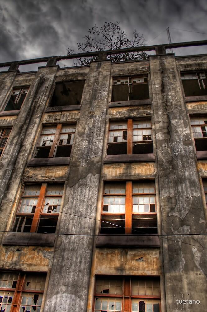 hospital civil by tuetano