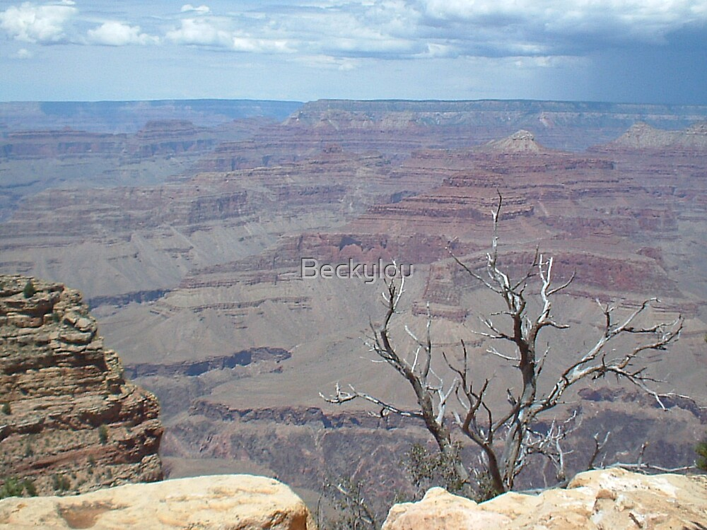 Grand Canyon View 4 by Beckylou