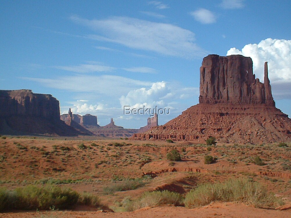 Monument Valley Panorama by Beckylou