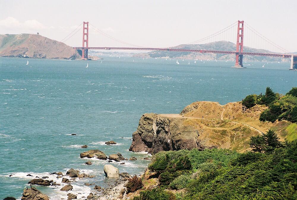 Lands End, SF, CA by stephen hewitt