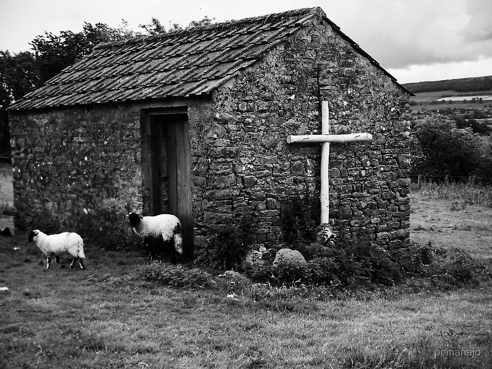 The Shepherd of the Sheep or a small barn? by pemanajo