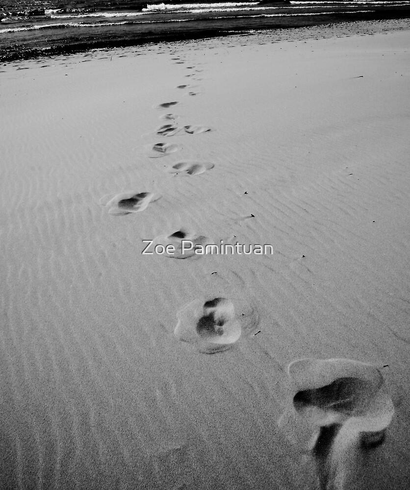 Wanderings by Zoe Pamintuan