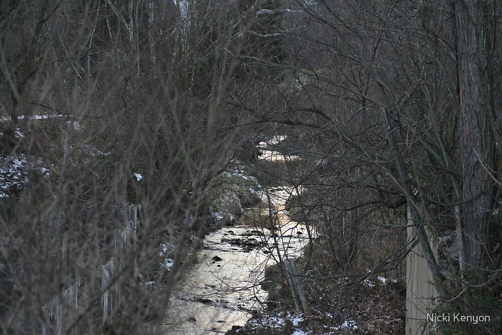 Little creek by Nicki Kenyon