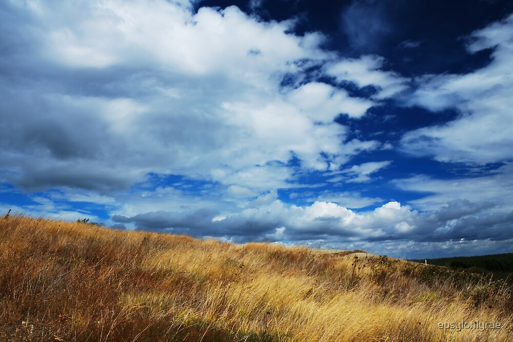 Wilderness by epsylonlyrae
