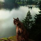 Cougar , Deep Cove by Cliff Vestergaard