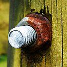 Rusty nut by msflip