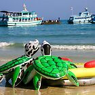 Stranded turtles by indiafrank