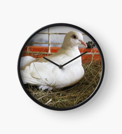 Little White Dove 2 Clock