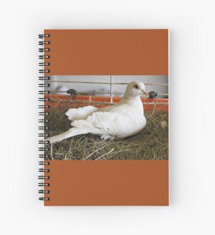 Little White Dove 2 Spiral Notebook