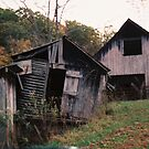 Old Family Barns by Cathy Cale