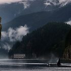 Indian Arm , Vancouver by Cliff Vestergaard