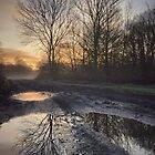 Winter in Wimbledon Common by Ludwig Wagner