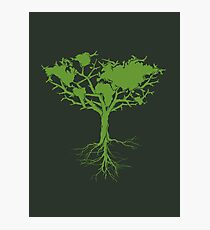 Earth Tree Photographic Print