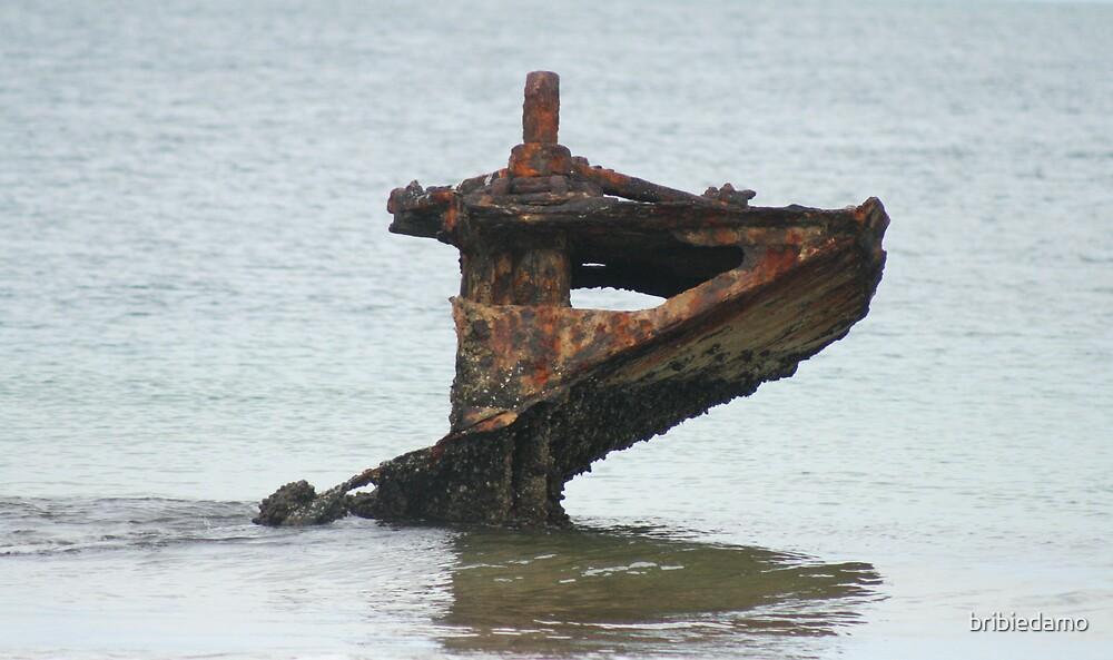 Return to the Sea by bribiedamo