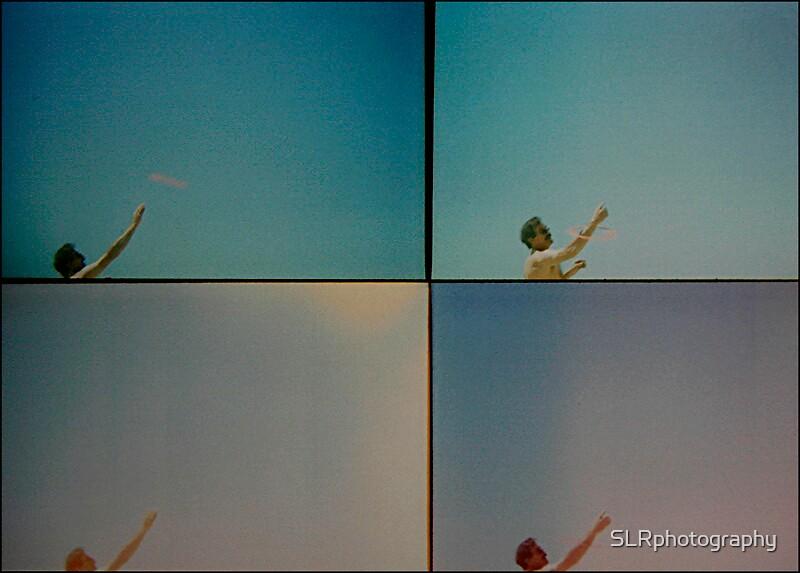 Frisbee fun by SLRphotography