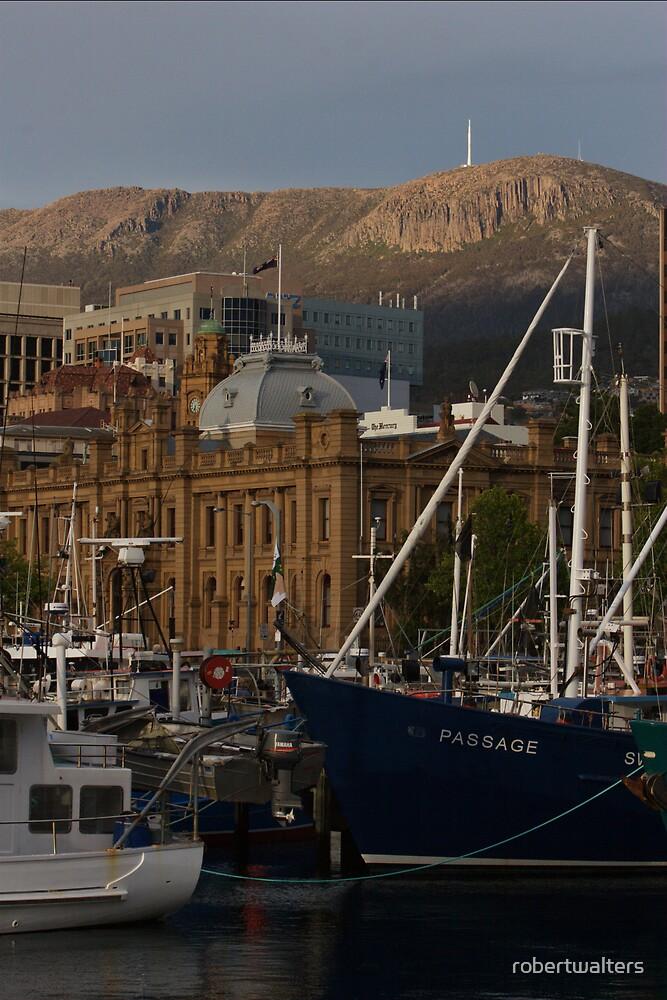 Hobart & Mt Wellington by robertwalters