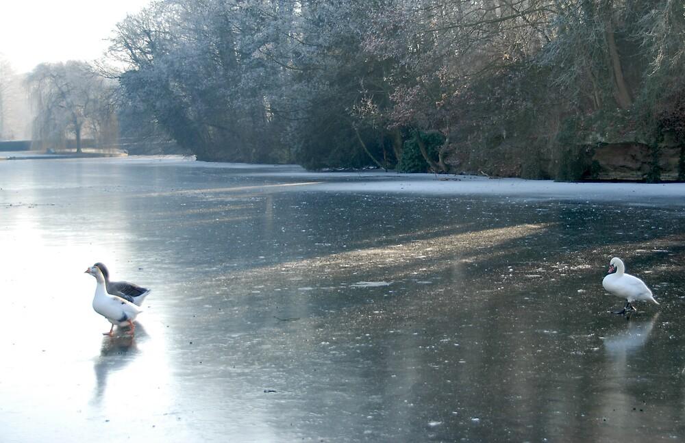 A Winter's Tale in Four Shots - 2 by jensNP