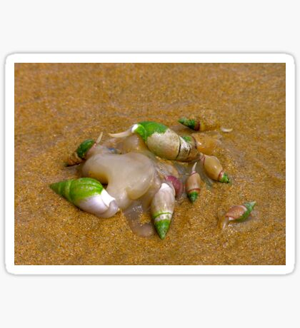 beach party Sticker