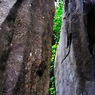 Cataract Gorge Rocks 1A by MyceanSage