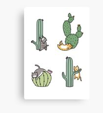 Cacti Cats Canvas Print
