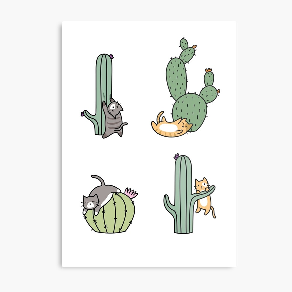 Kakteenkatzen Metallbild