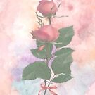 Roses by Catherine Hamilton-Veal  ©
