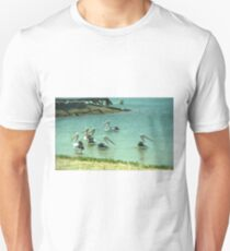 Pelicans by the shore  T-Shirt