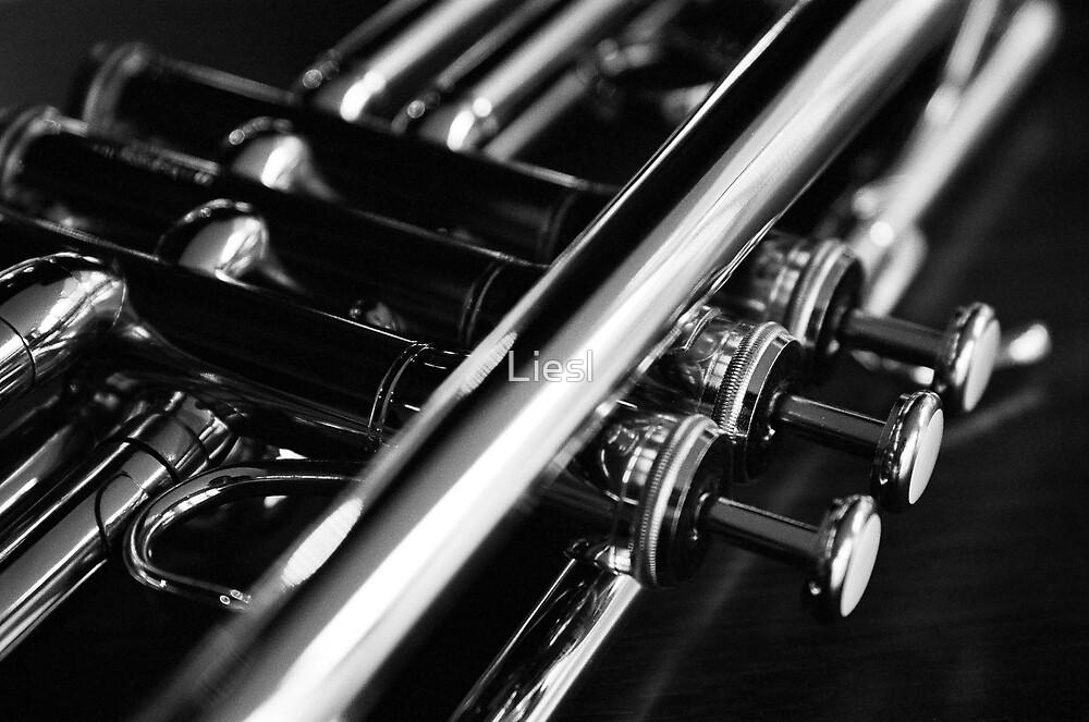 Trumpet by Liesl