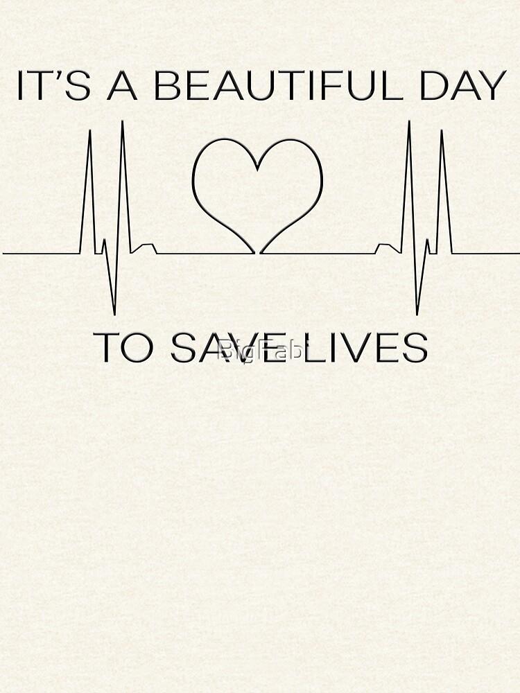 Es un hermoso día para salvar vidas de BigFabi